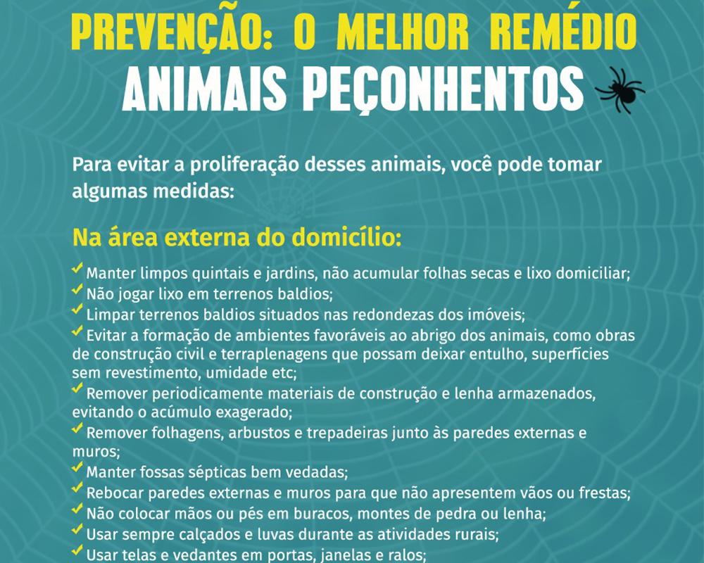 Secretaria da Saúde reforça cuidados para evitar acidentes com animais peçonhentos