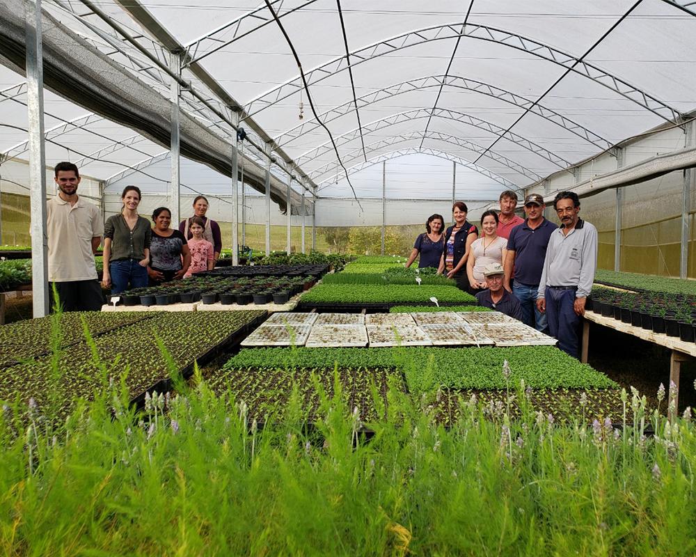 Em setembro serão realizados três cursos de capacitação para agricultores