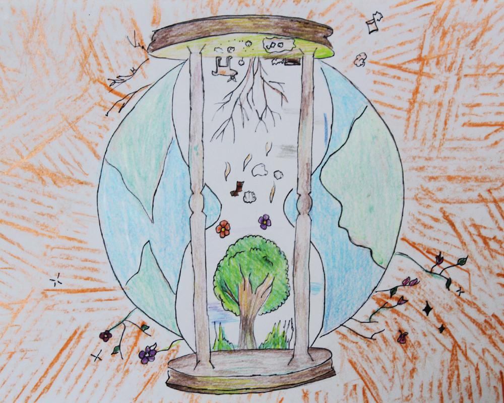 Desenhos para o Calendário Ecológico 2020 já foram escolhidos