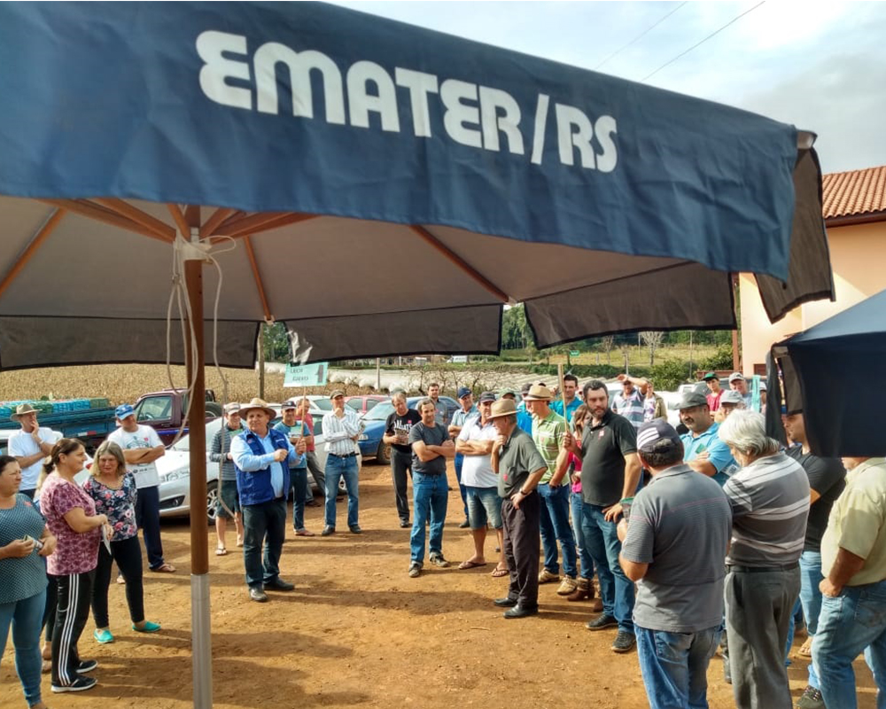 Prefeitura de São Marcos apoiou o Dia de Campo