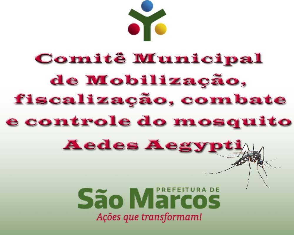 Combate constante à Dengue